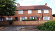 Terraced house to rent in Spenser Road, Ipswich