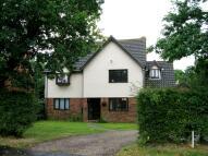 House Share in Grasslands, Langham