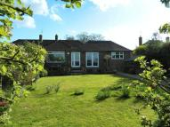 3 bed Semi-Detached Bungalow for sale in White Cottage Road...