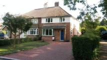 3 bedroom semi detached house in Penshurst Road, Leigh...