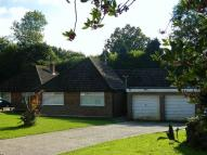 Detached Bungalow for sale in Wyndham Close, Leigh