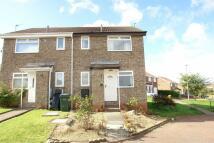 1 bedroom Terraced home in Celandine Way, Gateshead