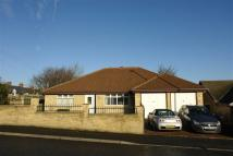 Detached Bungalow for sale in Albion Street, Gateshead...