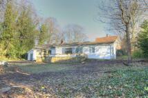 Detached Bungalow in Brackendene Drive...