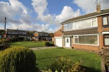 3 bed semi detached house to rent in Sunningdale Close...