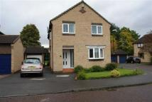 Whickhope Detached house to rent