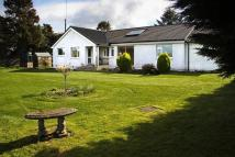 Detached Bungalow for sale in BarrochleaColvend...