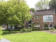Flat to rent in Lone Pine Court...