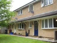 Terraced property to rent in Sir John Pascoe Way...