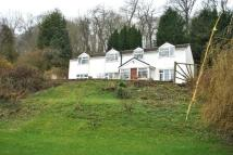 Detached house for sale in Maes-Yr-Haul, Erbistock