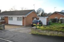 Semi-Detached Bungalow in Willow Drive, Llay...