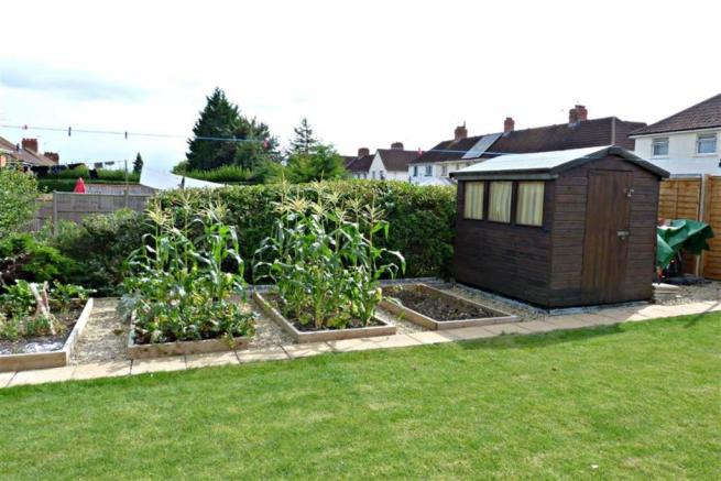 Vegetable planters and shed