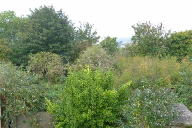Woodland/Nothern Slopes View