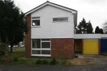 3 bed house to rent in Maple Road, BILLINGSHURST
