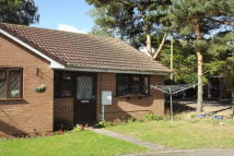 Bungalow to rent in All Saints Croft...