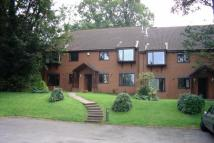 1 bed Apartment in Swan Court, Stapenhill