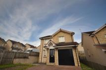 Detached house to rent in Dippol Crescent...