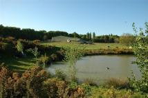Equestrian Facility house for sale in Newick, West Sussex