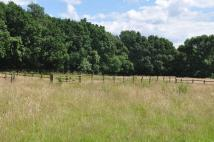 new development in Rudgwick, West Sussex