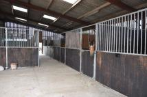 2 bed Equestrian Facility house to rent in Okehurst Lane...