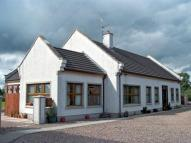 Detached Bungalow for sale in Randox Road, Crumlin...