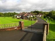 Detached Bungalow for sale in Blackisland Road...