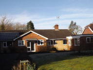 4 bed Detached Bungalow to rent in Bessels Green Road...