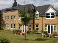 property to rent in Bradbourne Vale Road...