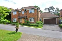 Detached property in Queen Annes Gate, Farnham