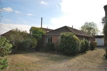 Detached Bungalow for sale in Upper Weybourne Lane...