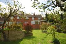 semi detached house in Wrecclesham Hill, Farnham