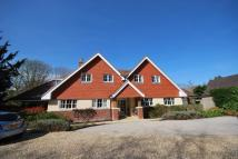 Ground Flat for sale in Vicarage Hill...