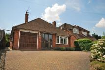 Detached Bungalow in Tilford Road, Farnham