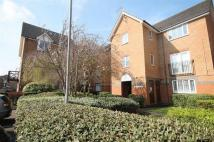 Detached house to rent in Peregrin Road...