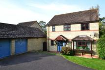 Detached house to rent in Wincanton