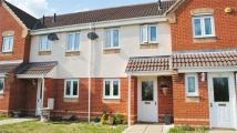 Marigold Walk Terraced property to rent