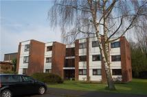 2 bed Flat in Beech Copse...