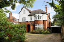 Detached property for sale in Arthur Road, SW19