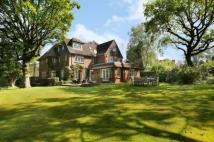 7 bedroom Detached property in Drax Avenue, Wimbledon...