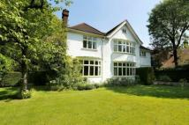 Detached house for sale in Somerset Road, Wimbledon...