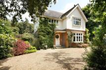 8 bed Plot for sale in Parkside Gardens, SW19