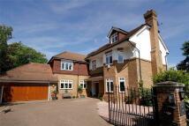 Detached home in Bathgate Road, Wimbledon...