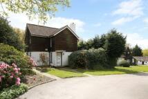 Detached property to rent in Warren Farm, Camp Road...