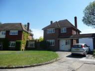 Detached property to rent in Denberry Drive, Sidcup...