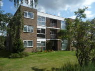 1 bed Flat to rent in LONDON LANE, Bromley, BR1