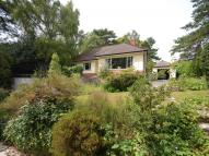 3 bed Bungalow in Spencer Road...