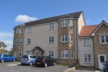 57 Peasehill Road Ground Flat to rent
