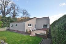 Detached Bungalow to rent in Grange Road, Burntisland...