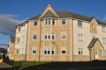 2 bed Ground Flat in 15C Trondheim Parkway...