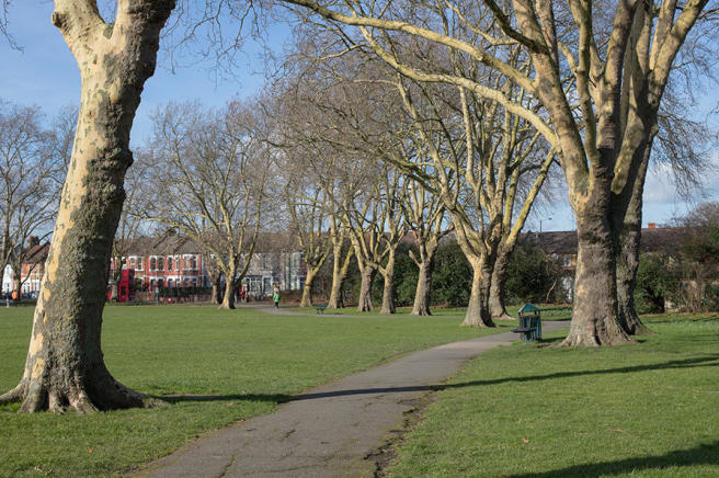 Chestnuts Park